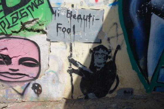 street art - TLV - fools